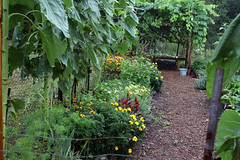 wet gardens 2