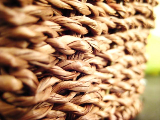 2010-08-24 weave 010