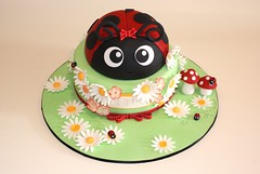 (Creations by Calamity Cakes) Tags: flowers cake ladybird ladybug toadstools