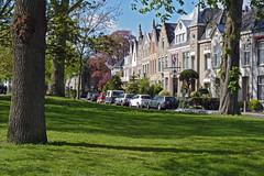 Good livin' (rob.brink) Tags: park holland tree green netherlands living bomen groen good nederland gras alkmaar vestingswerken