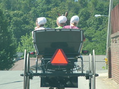 Three in a buggy 01