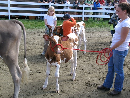 Tunbridge Fair 2010