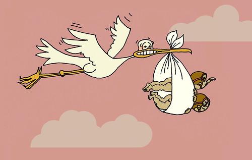 pregnancy stork