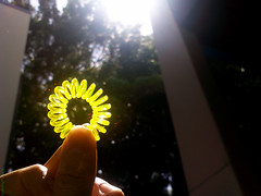 Detalhes (Vitor Chiarello) Tags: sun luz sol colors cores kodak mackenzie detalhes motorala litgh zn5