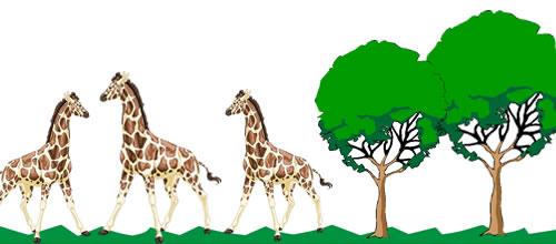 Seleção Natural: apenas os animais mais bem adaptados sobrevivem