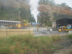 Through the Blue Mountains (Figgles1) Tags: railroad blue mountains train pacific indian railway bluemountains nsw newsouthwales dirtywindow throughthewindow indianpacific p2090197