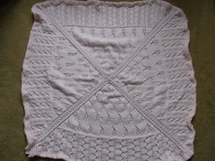 Rosebuddie before blocking
