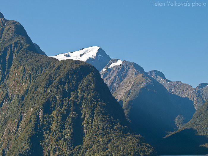 Fiordland-271