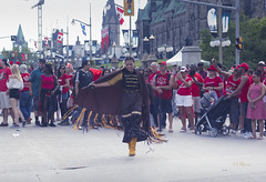 Canada Day 150 Edit-4 (O Harris) Tags: canadaday150 canadaday dance indigenous indigenouspeople indegenousdance ceremony costume outdoors people spectators parliament arliamentbuildings parliamenthill eastblock flags canadianflag street streetfestival 2017 summer ottawa canada native festival shorts shortshorts