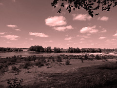 Loire saumon (François Tomasi) Tags: landscape paysage loire indreetloire touraine france europe voyage travel fleuve eau water clouds cloud nuages nuage ciel nikon reflex photo photography photographie photoshop filtre yahoo google flickr françoistomasi lights light lumière arbre tree composition vue panorama nature rose pink pointdevue pointofview pov juillet 2017