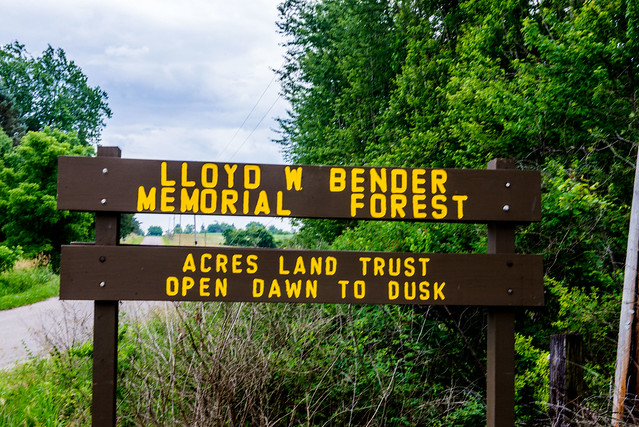 Lloyd W. Bender Memorial Forest - June 22, 2017