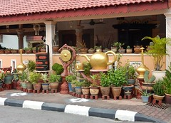 Beautiful Pot Collection (mikecogh) Tags: malacca kampungmorten potplants collection pots ceramic gong teapot kerb gutter striped melaka
