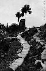 Solitude (AЯίF | Md. Arifur Rahman) Tags: people bw man tree lines canon lost solitude alone lonely leading sylhet bangladesh lonelyness jaflong ladinglines