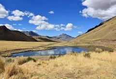 Perú: Abra La Raya (zug55) Tags: peru landscape paisaje perú altiplano abralaraya laraya larayapass