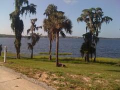 Lake Minehaha