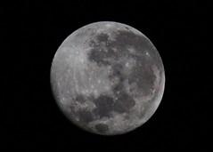 2010-06-28 04-03-34 - IMG_9086 Moon Waning Gibbous (Degilbo on flickr) Tags: moon canon brisbane southernhemisphere waninggibbous eos500d acdseepro3