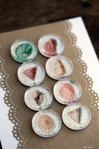glass magnets :: shells II