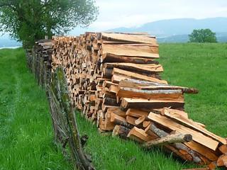 firewood stacks