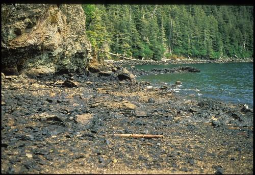 Exxon Valdez Oil Spill - 0003