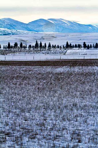 Ida Valley Snow 2