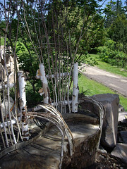 Garden Thrones (lehua_mc) Tags: oregon garden bench portland found carved seat branches decoration craft cast stump birch quirky materials woodworking