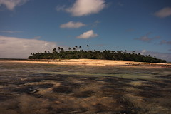 Hulu'i Paongo Point, Lifuka, Ha'apai (Forster-Photography) Tags: ocean water island pacific coconut south palm reef tonga haapai lifuka