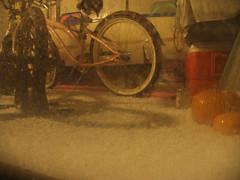 Hail in Santa Cruz 5