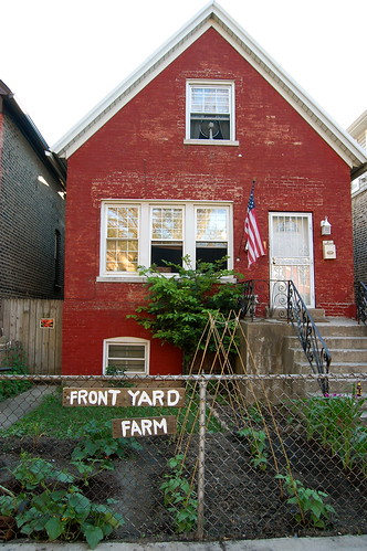 Front Yard Farm week 4