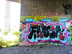 Falser (monolaps) Tags: graffiti false falser