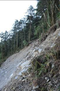 台灣地質變動劇烈,再則地形陡峻,高山森林的立地條件脆弱,經不起干擾。