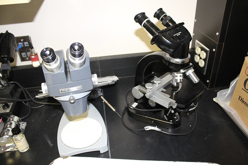 More microscopes