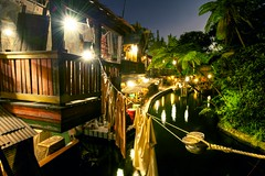 The Jungle Cruise Dock
