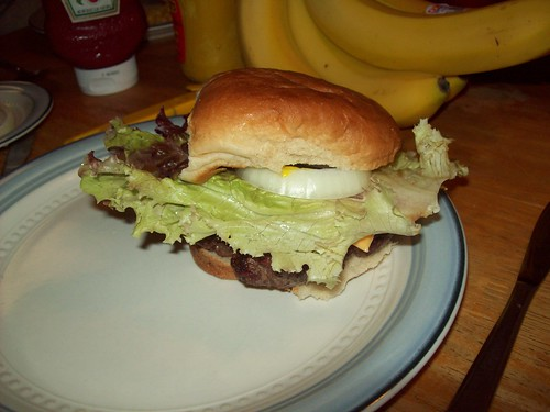Burgers V