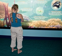 Sarah never misses an opportunity to research sea life. (colorblindPICASO) Tags: sarah carpet reading epcot arms legs read barefoot waltdisneyworld epcotcenter shouldertattoo bluecarpet blondhair livingseas braidedhair bluetanktop gambittattoo