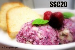 SSc20-Berry Frozen Yogurt