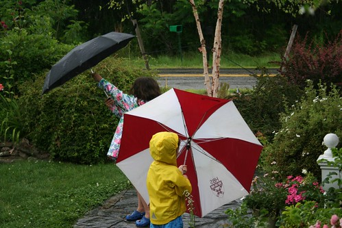 Rainy day silliness