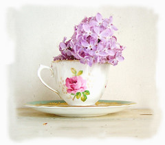 lilac tea by Lilydove & Chou Chou