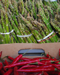 produce in Kensington Market (Sally E J Hunter) Tags: toronto pepper asparagus produce kensingtonmarket moo1 topwkm