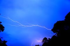 Rayos (de P. M.) Tags: espaa azul noche spain tormenta nocturna rayo soria relampago sanleonardo elijetucolor sanleonardodeyage
