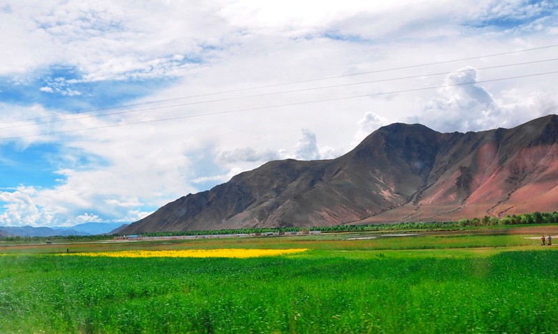 Tbjun20-2010 (291) back Lhasa