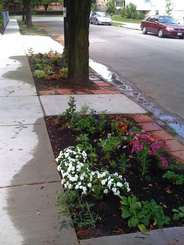 sidewalk garden left