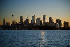 Sydney (31)