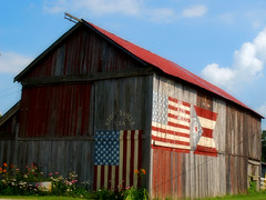 welcome to Stoutsville USA (LaLa83) Tags: old ohio red summer usa barn nikon hometown july patriotic flags wildflowers 2010 d60 stoutsville