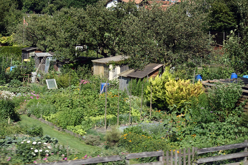 Swiss community gardens  200