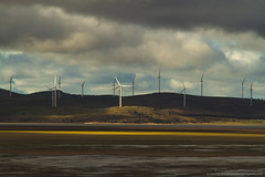 Windfarm, Lake George, NSW, Australia (Bass Photography) Tags: cloud lake water energy power wind farm australia windmills lakegeorge newsouthwales canberra plains windfarm propellor turbines bungendore megawattss australiansuburbs