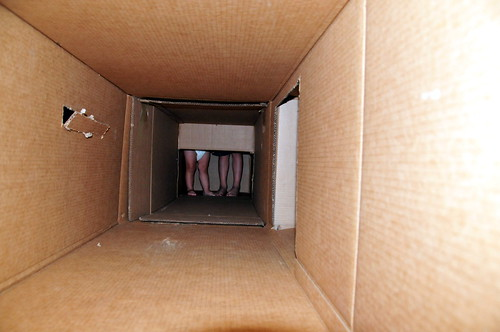 little legs in the box fort