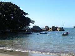 DSCN0946 (Blog do Papa-Siri III) Tags: praia sc portobelo
