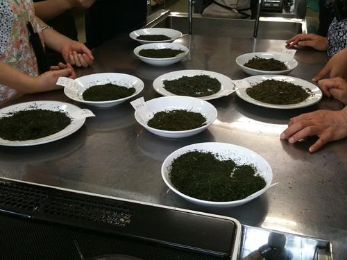 日本茶研修会