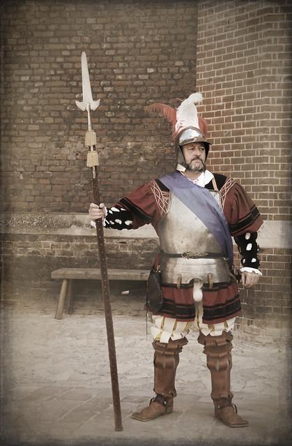 Tudor Guard