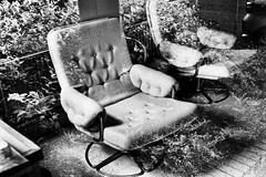 chair (monkeyfinger) Tags: cambridge blackandwhite highcontrast provoke silverefexpro